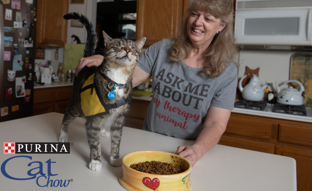 Purina Cat Chow | Tommy the blind cat