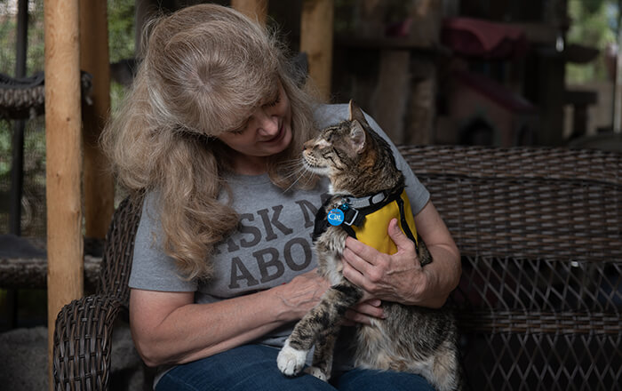 Tommy the blind cat and his owner, a Pet Partners handler