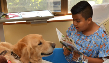 Therapy dogs with Pet Partners