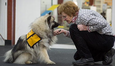 Does your dog have what it takes to be a therapy dog?